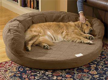 Just found this Orthopedic Dog Beds - Super-Absorbent Bolster Dog Bed with Memory Foam -- Orvis on Orvis.com!