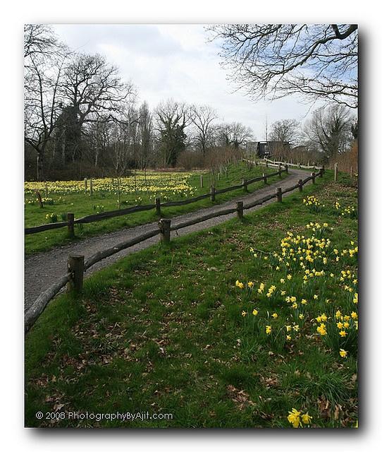 Best 16 Best Garden Split Rail Fence Images On Pinterest 400 x 300
