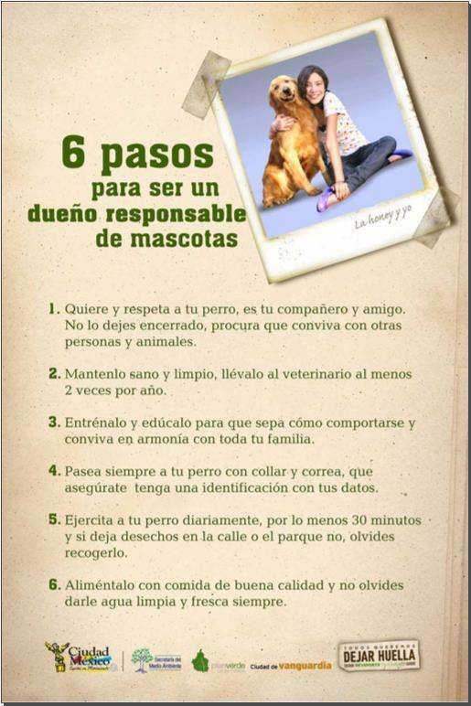 dueños responsables #mascotas