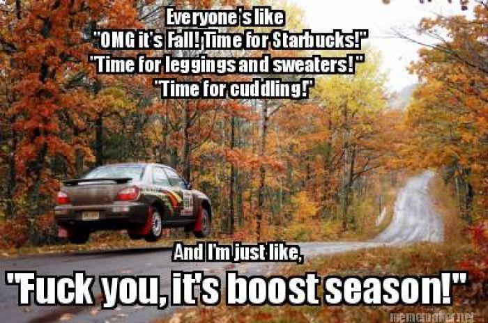Subaru Memes - Yahoo Image Search Results