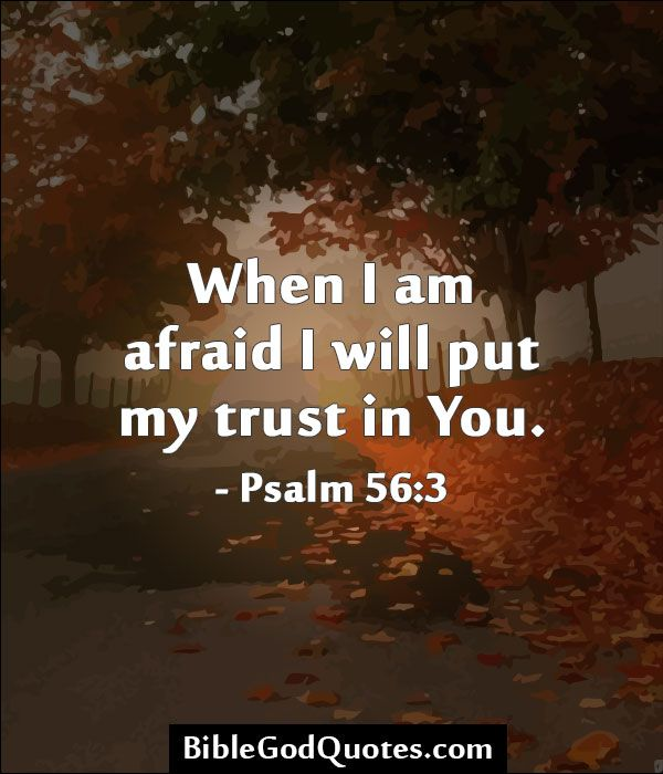 When I am afraid I will put my trust in You. - Psalm 56:3