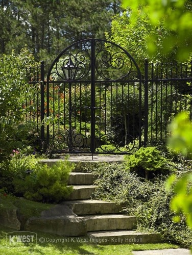 Black wrought iron fence surrounded by green.. that'd be a nice walkway up to a house!