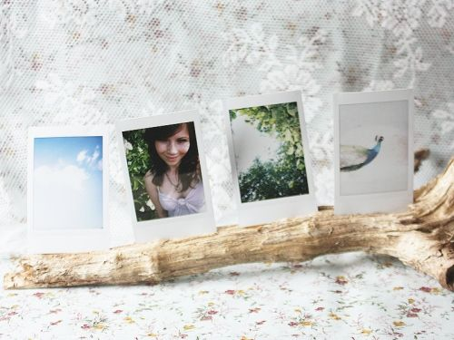 LOVE! Driftwood photo holder. I would use a larger piece of drift wood to hold a 8x10, possibly of the family or a nice beach print.