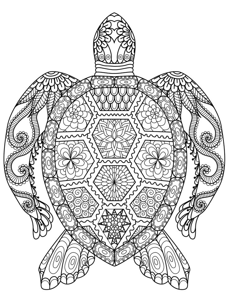 20 Gorgeous Free Printable Adult Coloring Pages Coloring Back To