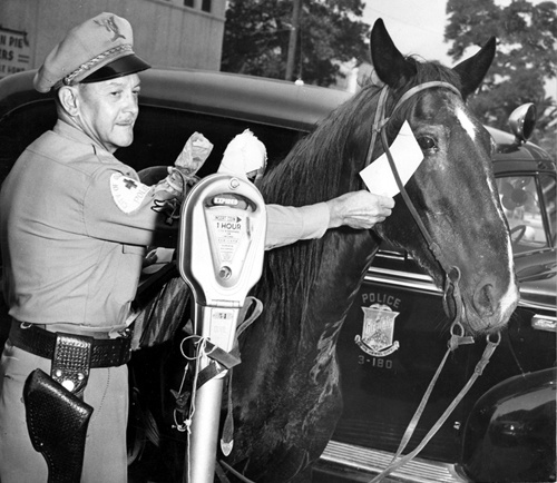 A horse tied to a parking meter on a Glendale business street gets an overtime parking ticket from Officer Roy E. Armstrong, 1949. The horse's owner was shopping and later received a warning for tying his horse to the parking meter. Glendale Public Library. San Fernando Valley History Digital Library.