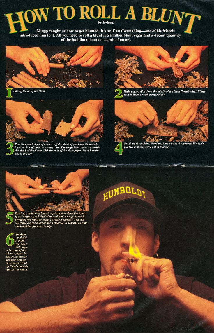 """How to Roll a Blunt"" by B-Real for High Times (1992) Larger"