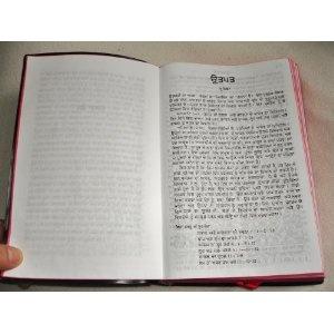 Punjabi Bible / The Holy Bible in Punjabi Language - C.L.LARGE PRINT / 2009 Print   $89.99