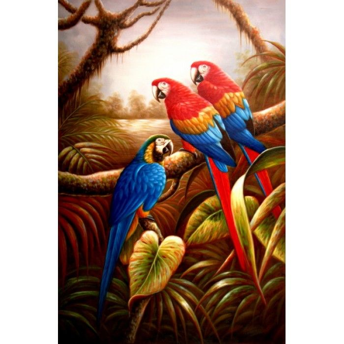 8 best images about parrots on pinterest for Cheap canvas paintings for sale