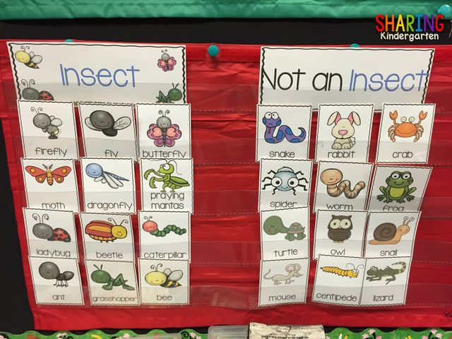 Insects {Print & Play Pack} (via Bloglovin.com )