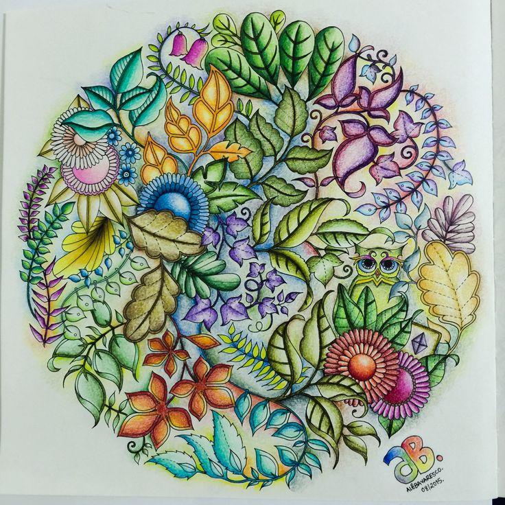 Owl Bushes Enchanted Forest Johanna Basford Secret GardenPrismacolorAdult ColoringDiy ArtInspiring