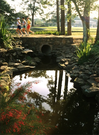 houston aquarium memorial day
