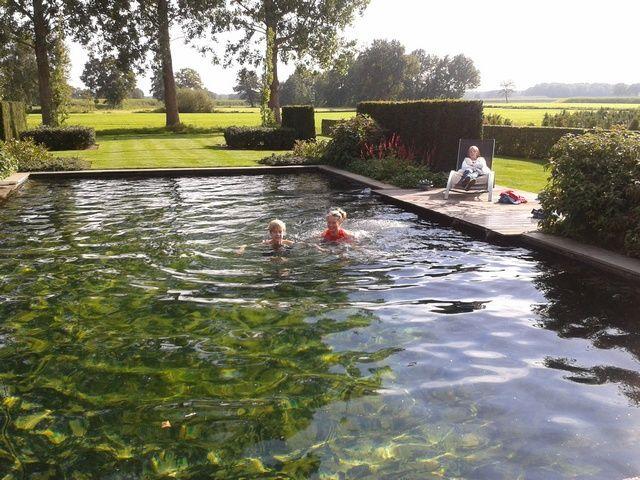 landelijke zwemvijver, aanleg door www.frevandal.nl, gespecialiseerd in zwemvijvers