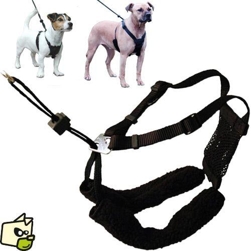 harnais non pull pour le contr le du chien en laisse harnais dressage et ducation. Black Bedroom Furniture Sets. Home Design Ideas