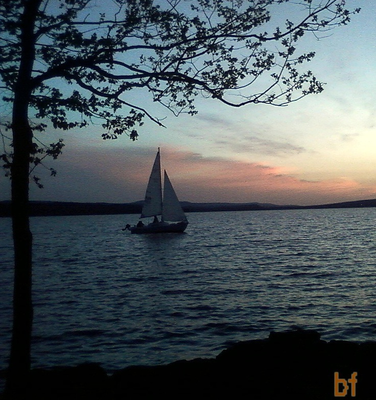 30 best Lake Dardanelle State Park images on Pinterest