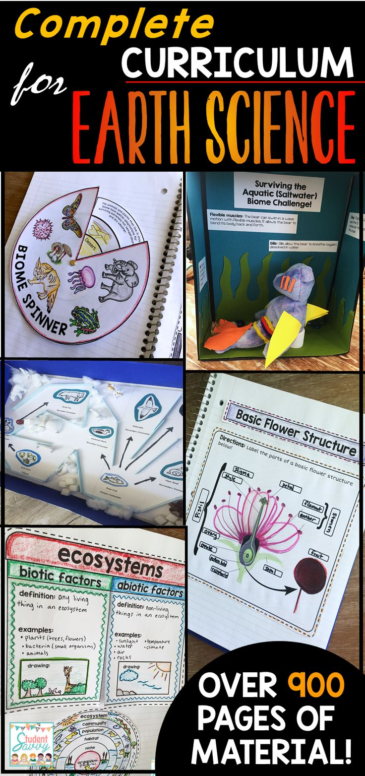 449 best work activities images on pinterest learning school earth science interactive notebooks powerpoints stem activities assessments google classroom and fandeluxe Gallery