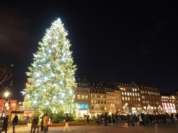 christmas tree in the centre ofplace Kléber Strasbourg