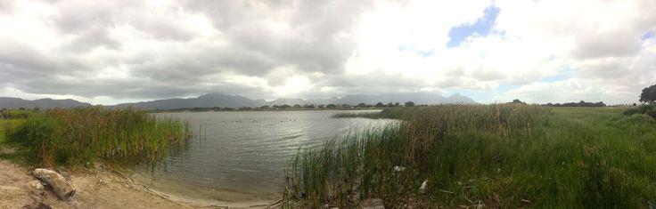 Economists hail Cape wetland conservation | EfD - Initiative
