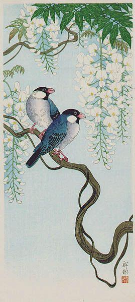 """小原古邨(祥邨)Ohara Koson """"Sparrows on Wisteria """""""