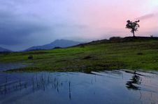 Mysore, Coorg And Wayanad Family Package