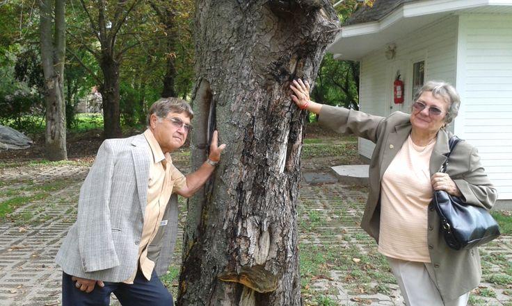 Tihany DXN szeminárium: egy kis kikapcsolódás. www.gyogycaffe.dxn.hu