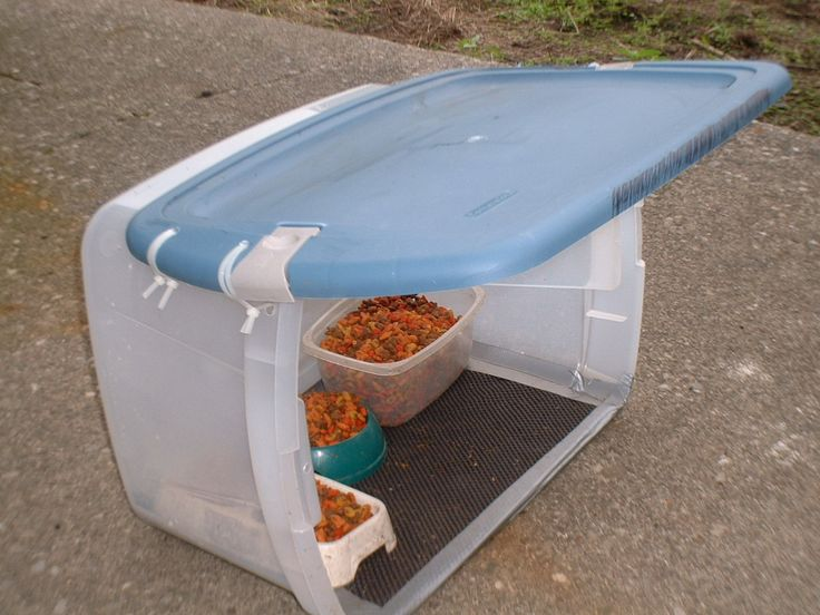 Feral Cat Food And Shelter Station