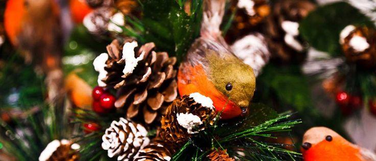 Non è mai troppo presto per pensare a #Natale noi di #smodatamente siamo già sul pezzo  e vi presentiamo i primi post sul #Natale2016, si parla di #tendenzedecorazioni per la casa, scoprite tutto al lik -> http://www.smodatamente.it/tendenze-decorazioni-natale-2016/