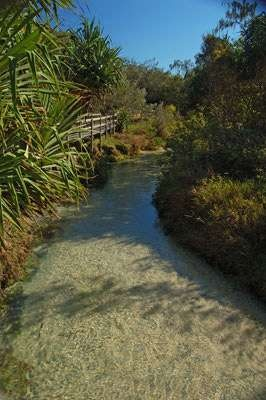 eli creek, fraser island. naturally occurring lazy river :) which has a current pulls your down to the each .... Great fun !