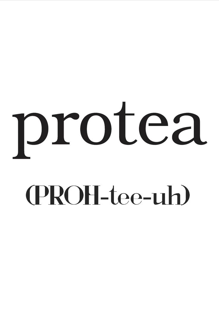 Confused about how to pronounce our name? Look no further! #Protea