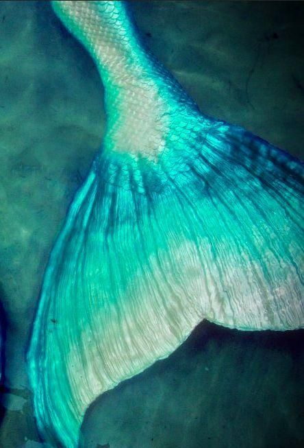 Metallic mermaid