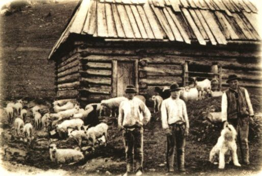 Polish Tatra Shepherds and their dog in photo from 1908.