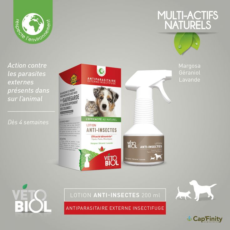 VETOBIOL - Lotion Anti-insectes 200 ml #vetobiol #NaturelEtEfficace #chat #chien #Soins #ActifsNaturels #SansPesticides #Antiparasitaire
