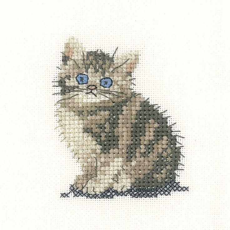 Tabby Kitten | Heritage Crafts Counted Cross Stitch Kit