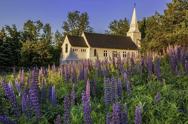 St Matthews Church - Sugar Hill New Hampshire  by Thomas Schoeller
