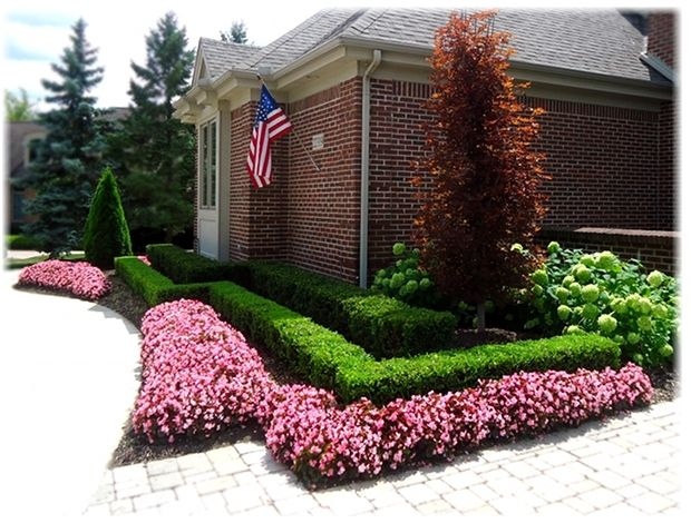 Front yard landscape design with boxwood hedges and for Flower ideas for front yard