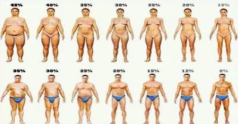 Studi: Consumare Cumino per 8 settimane fa perdere peso e migliorare il metabolismo