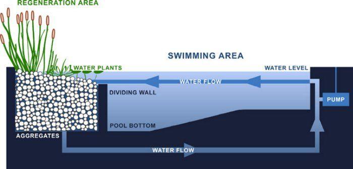 como fazer o sistema de limpeza de uma piscina natural