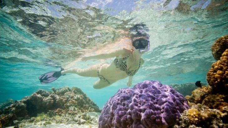 Snorkling ved Pacific Resort Aitutaki, Cook Islands