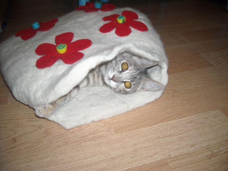 Camas de Fieltro para gatos
