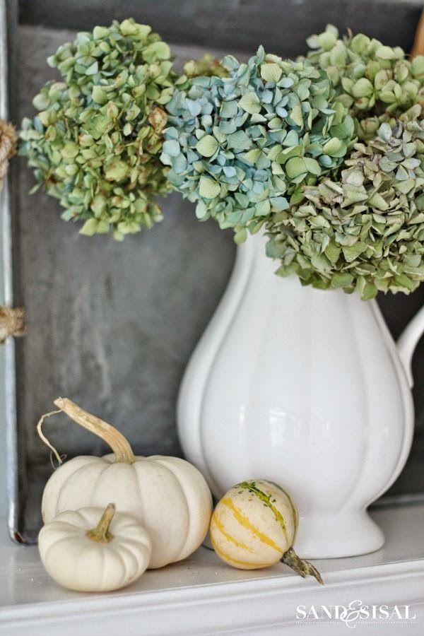 Lovely white pitcher of hydrangeas. #pitcher  #white  #hydrangea http://www.aftershocksinteriordecorating.com