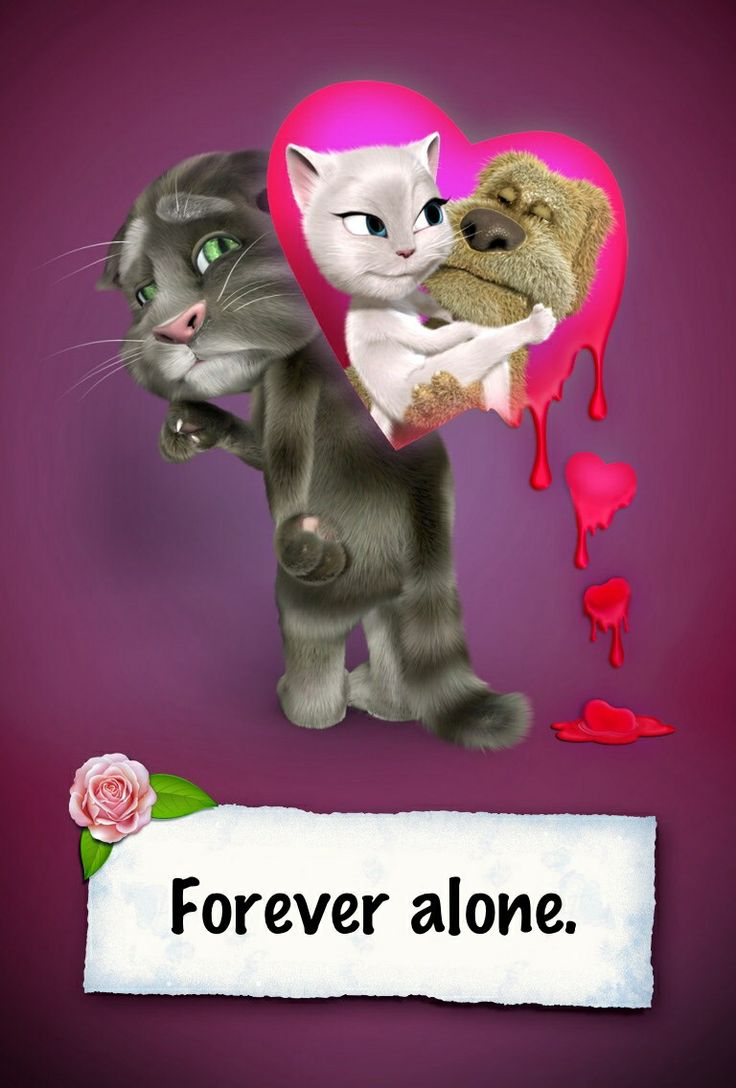 Talking tom pictures this damn cat pinterest toms - My talking tom pictures ...