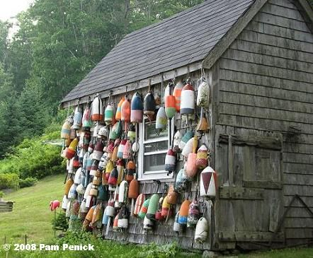 lobster buoys I love Maine!