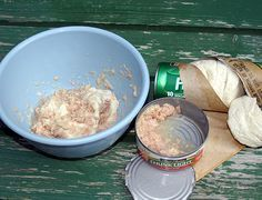 Catfish Bait - Empty one can of tuna or mackerel (packed in oil, not water) into a mixing bowl, juice and all. Add the dough from a can or two of cheap biscuits. Knead by hand until the biscuit dough and fish are well blended. Add some flour if needed to get the right consistency. Store in zip-seal plastic freezer bags. To use, pinch off a suitably sized chunk and place on a No. 4 treble hook.
