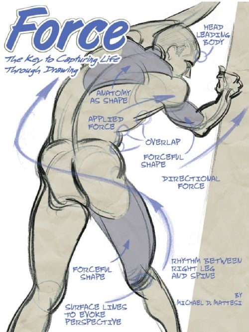 Force Character Design From Life Drawing Download : Best anatomy reference images on pinterest human