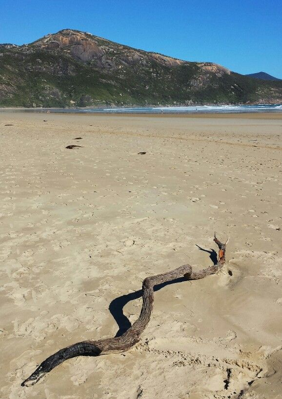 Norman Beach, Wilsons Promontory National Park, Victoria, Australia