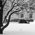 The Hazards of Homelessness in Winter.   http://www.thedi.ca/the-hazards-of-homelessness-in-winter/