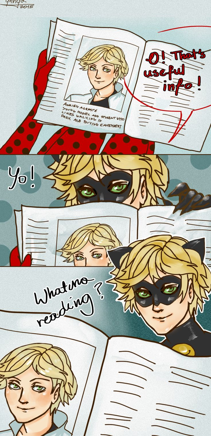 i can't stop laughing at this Miraculous ladybug memes