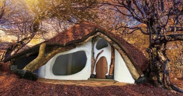 Mit seinem EinBaumHaus möchte der Baukünstler Wolfgang Lackner gegen den klassischen Bauwahn protestieren. Für sein Konzept-Haus genügen ihm ein einziger Baum, etwas Lehm und Stroh. Für dieses Projekt will der Architekt nur biologische Materialien verwenden.