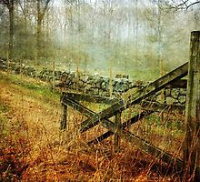 Open Gate by Randi Grace Nilsberg