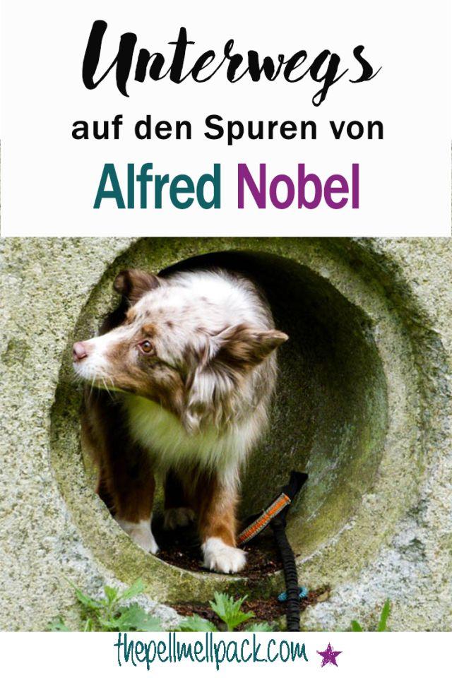Unterwegs aus den Spuren von Alfred Nobel | Ausflug mit Hund zum Gebiet einer ehemaligen Dynamitfabrik | Wandern mit Hund | thepellmellpack.com