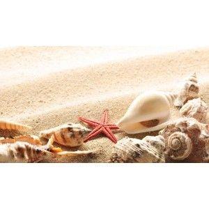 Wallpaper seashells, summer, beach, sand, sun, theme macro, download 132777-1920×1080 | Paintings, Art, Wallpaper, HD, Widescreen